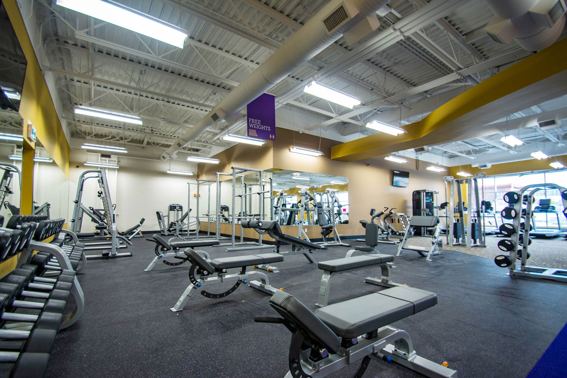 anytime fitness business plan Health plan discounts private  i have always been looking for fun and excitement in doing business anytime fitness fitted the bill with everything i was.
